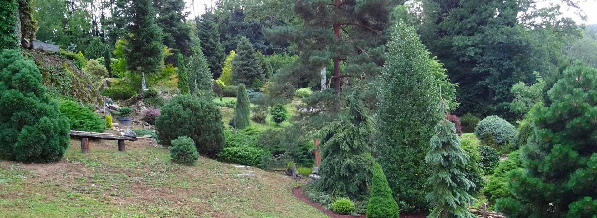 Le Jardin des Baussottes - Vosges